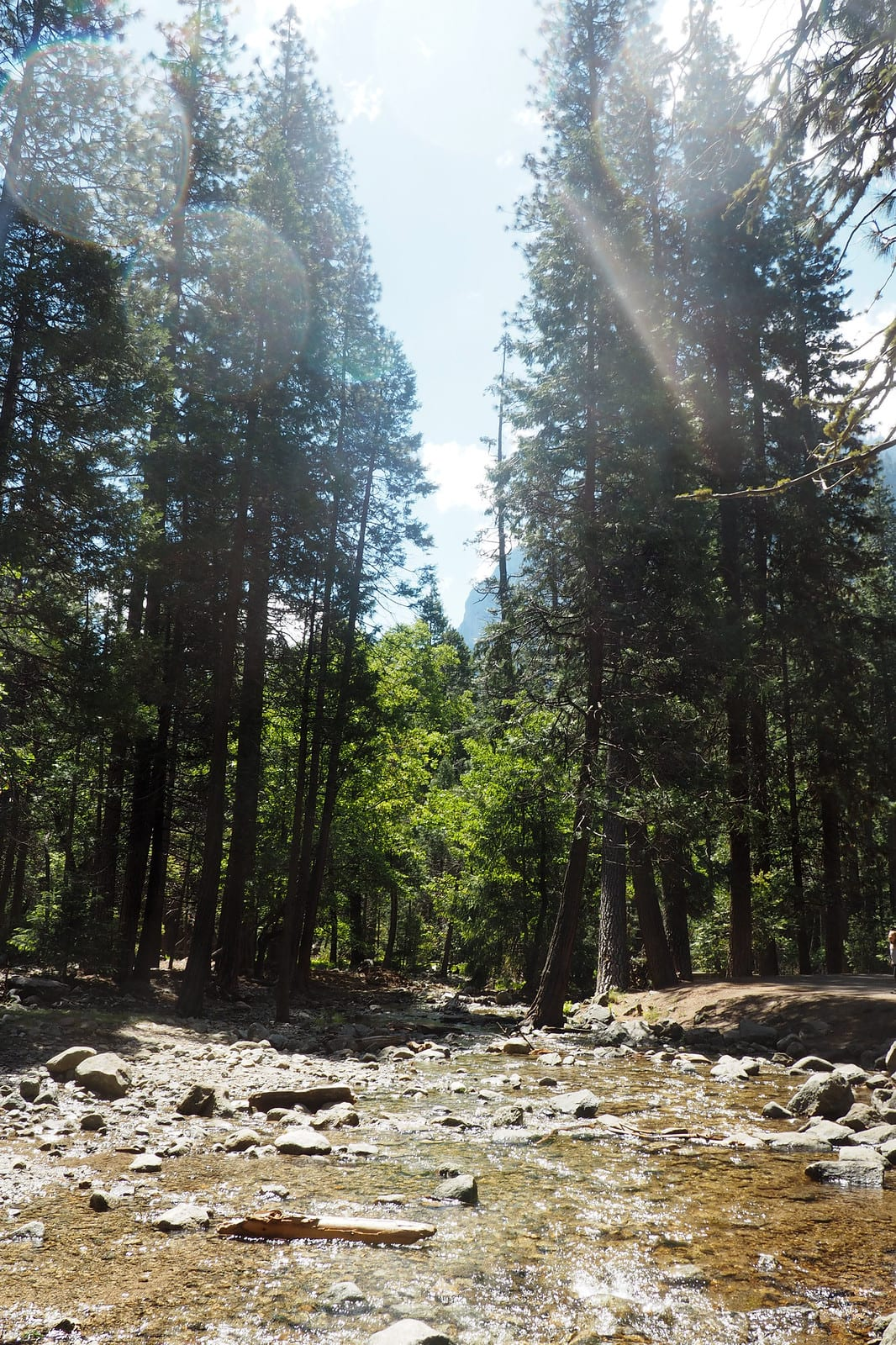 what do in Yosemite national park